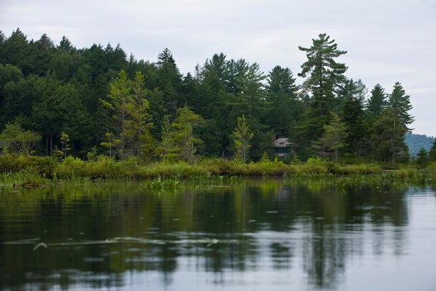 Upper St. Regis Lake in the Adirondacks, a good place to explore nature.