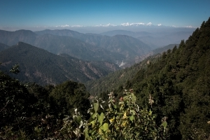 Himalayan glaciers granted status of 'living entities'