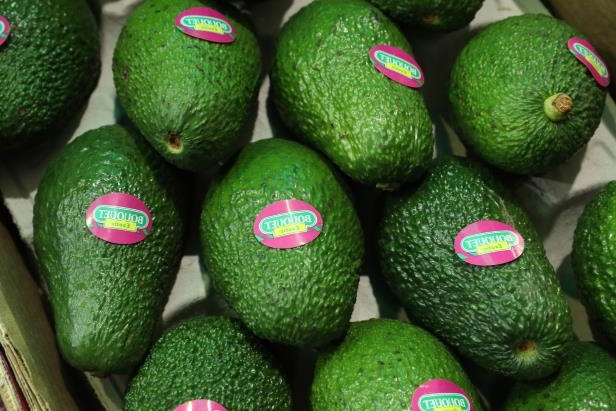 Avocados lie on display at a Spanish producer's stand at the Fruit Logistica agricultural trade fair on February 8, 2017 in Berlin, Germany. The fair, which takes place from February 8-10, is taking place amidst poor weather and harvest conditions in Spain that have led to price increases and even rationing at supmermarkets for fresh vegetables across Europe. (Photo by Sean Gallup/Getty Images)