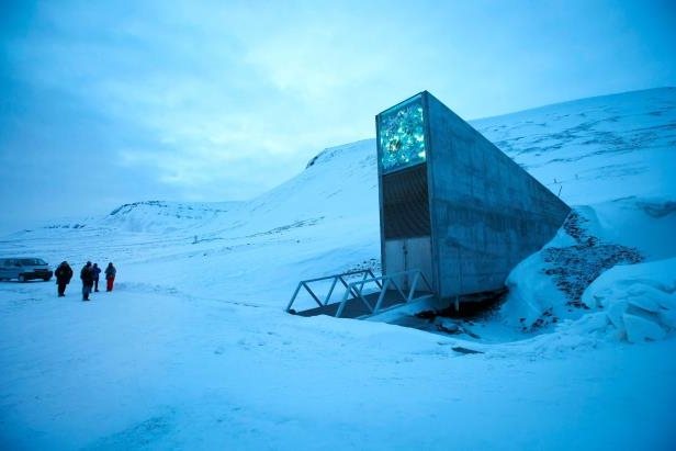 Technology Precious Seeds In Norway S Doomsday Vault Are Safe