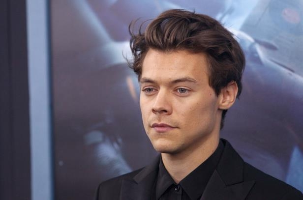 Entertainment: Harry Styles Meets 14-Year-Old Fan Injured In