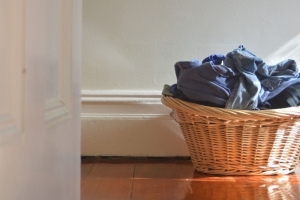 Your dirty clothes are catnip for bedbugs