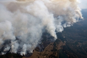 The numbers that reveal the scope of the California wildfires
