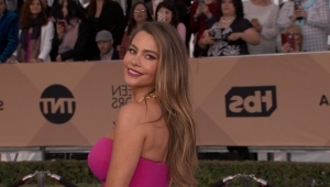 Sofia Vergara documents mammogram online