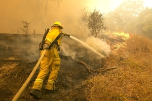 Wildfires are endangering parts of California's $2 billion weed industry
