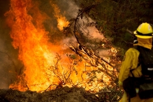 New fires in Sausalito, Santa Cruz and Dublin force evacuations