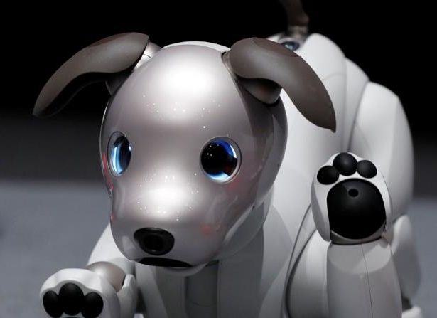 Tech & Science: Sony revives pet AI project with updated