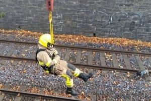 Dublin Fire Brigade save adorable dog in dramatic rescue from Irish Rail tracks