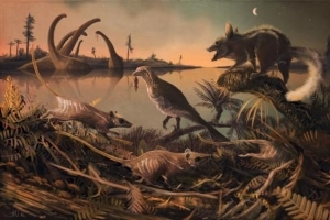 Tiny Fossil Teeth May Have Belonged to Earliest Mammals