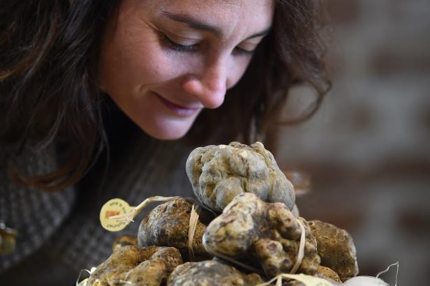 A woman smells white truffles during the World Alba White Truffles Auction at the Grinzane Cavour castle near Alba, northwestern Italy, on November 12, 2017.