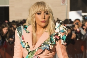 Lady Gaga stops concert to help bleeding fan
