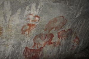 Rock Art Depicting Stone Age Camel Discovered