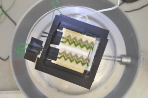 Scientists Create A Solar Cell By Printing Bacteria