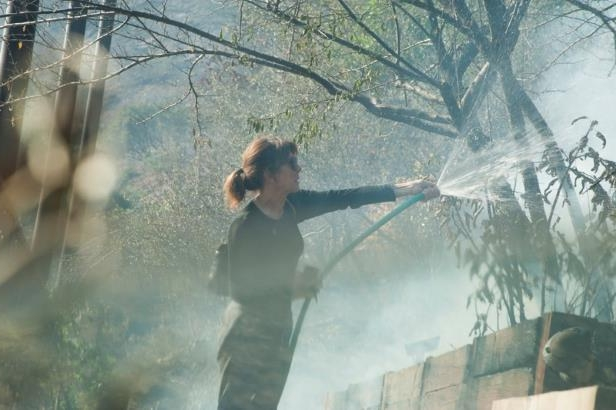 a blurry photo of a tree: Elizabeth Rawjee sprays water from a garden hose onto hotspots left by the Skirball fire in her backyard on the west side of Los Angeles