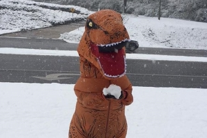T. Rex in Alabama Makes the Most of the First Snow of the Season