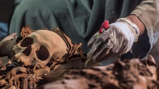 A picture taken on September 9, 2017 shows an Egyptian labourer unearthing mummies at a newly-uncovered ancient tomb for a goldsmith dedicated to the ancient Egyptian god Amun, in the Draa Abul Naga necropolis on the west bank of the ancient city of Luxor, which boasts ancient Egyptian temples and burial grounds. The finds at the tomb of 'Amun's Goldsmith, Amenemhat', which dates back to the New Kingdom (16th to 11th centuries BC), also contained a sculpture carved into a recess of him seated be