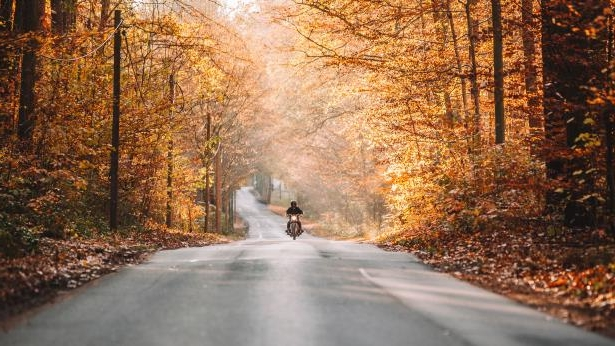 A Quick Guide to the Best Fall 2017 Motorcycle Riding Gear