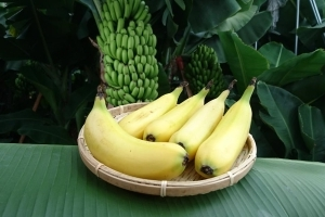 Can you eat banana peel? Japan's D&T Farm has made it possible
