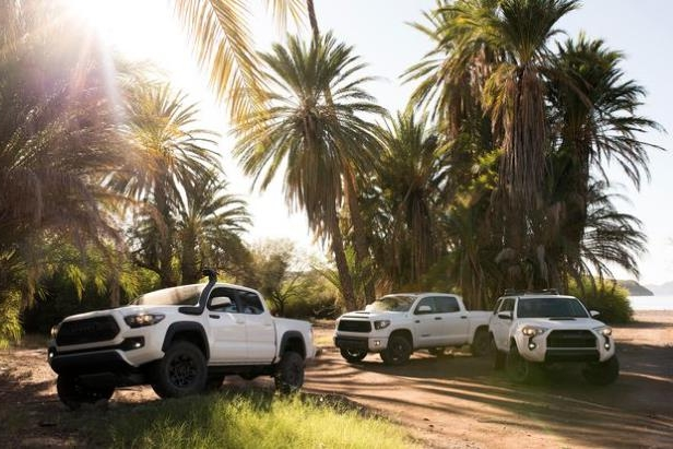 a car parked on the side of a road next to a palm tree: 2019 Toyota TRD Pro
