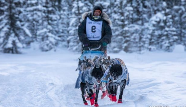 Dog dies on Yukon Quest trail, past champ Hugh Neff drops out of race
