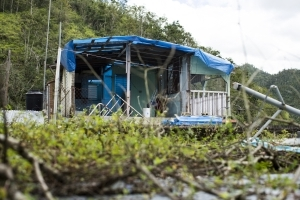 Exodus from Puerto Rico grows as island struggles to rebound from Hurricane Maria