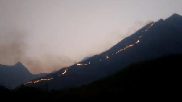 Theni forest fire: 9 dead, 27 rescued as search ops continue in Kurangani hills