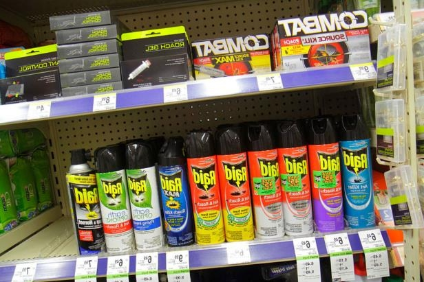 Shelves of bug spray for sale at Walgreens pharmacy.: People are spraying heavy-duty bug sprays, such as Raid that have high concentrations of pesticides in them, on substances like marijuana and tobacco and smoking it.