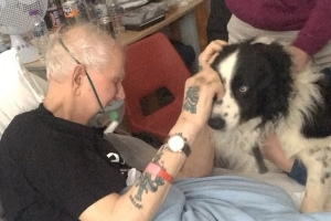 Grandpa's Dying Wish to See His Beloved Dog One Last Time Granted by Hospital