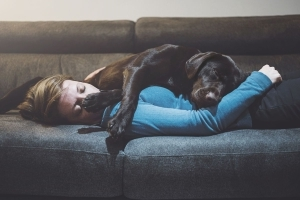 Sleeping With Your Dog Is OK, Study Finds