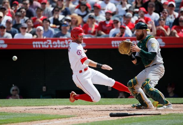 Slide 16 of 77: Los Angeles Angels' Zack Cozart, center, slides into home plate to score on a sacrifice fly by Justin Upton as Oakland Athletics catcher Jonathan Lucroy looks to catch the throw during the fourth inning of a baseball game, Sunday, April 8, 2018, in Anaheim, Calif. (AP Photo/Jae C. Hong)