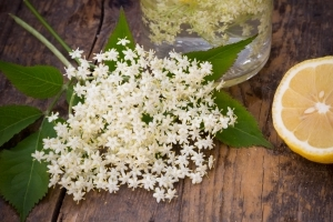 9 Elderflower Recipes Inspired by Harry and Meghan's Royal Wedding Cake Flavor