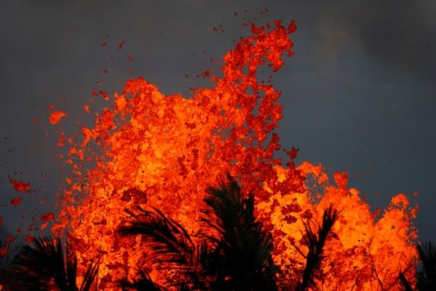 a tree with a sunset in the background: Lava gushes from a fissure eruption of the Kilauea Volcano in the Leilani Estates near Pahoa, Hawaii