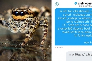 This student with a spider phobia ordered food just to get the delivery driver to help