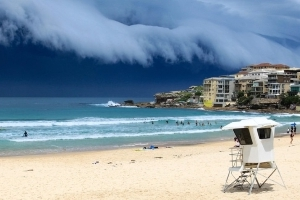 Auction clearance rates in Sydney tumble below 50%
