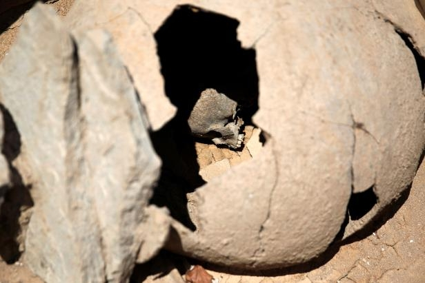 The skull of a child is seen inside a clay jar, a common practice for the burial of babies and children in ancient Greece known as pot-burial, at the ancient Falyron Delta cemetery in Athens