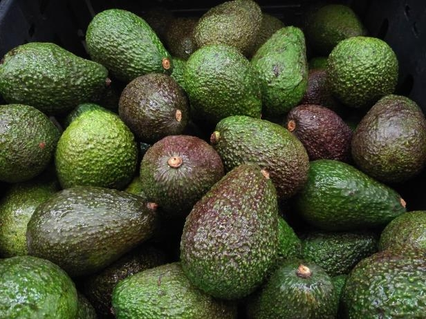 How to Ripen Avocados When They're Too Hard