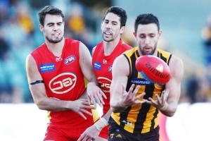 Hawks scrap to AFL win over Suns