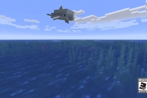 'Minecraft' and The Nature Conservancy Use Player Creations to Help Real World Coral Reefs