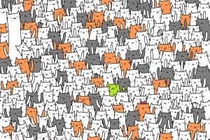 People are struggling to find the bunny hidden in a sea of cats in this viral brain teaser — can you spot it?