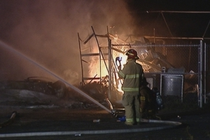 Animals killed, SPCA destroyed in Gatineau, Que., fire
