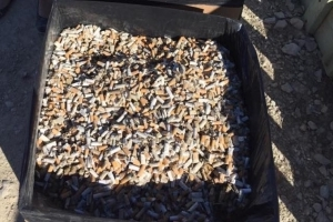 Holy smokes! 57 kg worth of cigarette butts picked up in Igloolik