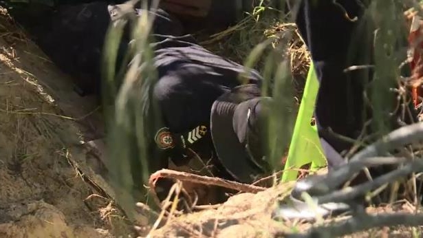 a bird sitting on top of a dry grass field: A police officer reaches down into the hole. Picture: 9NEWS