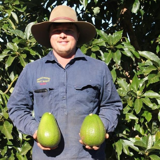 David Groves says his family is excited to be first commercial growers of the variety in Australia.