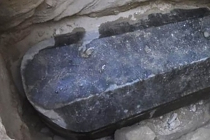 Mysterious black sarcophagus found in Egypt