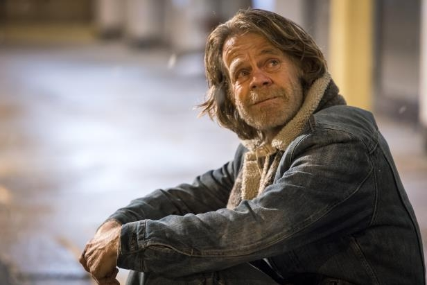 Slide 16 of 124: William Macy,