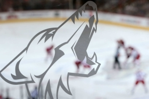 Coyotes owner looks to sell almost half of team he values at $500 million