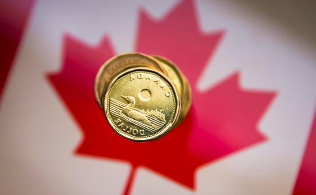 a close up of a logo: FILE PHOTO: A Canadian dollar coin, commonly known as the
