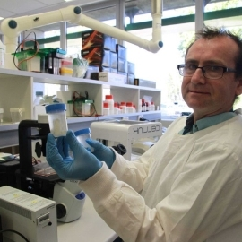 Dr Padraig Strappe holds crocodile cartilage that may be used to treat joint damage in humans.