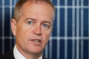 'This is taxpayer money': Shorten slams reef grant
