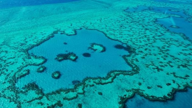 Aerial view of a coral reef: Australia's Great Barrier Reef is threatened by warming ocean temperatures